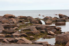 Rocky shore. Rocky shore with rocks crimson quartzite stock photo