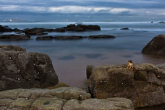 Rocky shore and ships. Crustation on rock overlooking ships on a rocky shore Stock Photo