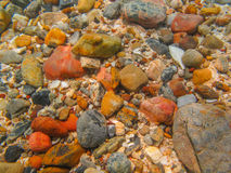 Rocky shore Stock Images