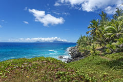 Rocky shore of tropical volcanic island Stock Image