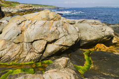 Rocky shore. Stock Images