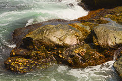 Rocky shore. Royalty Free Stock Images