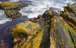 Rocky shore. Royalty Free Stock Photos