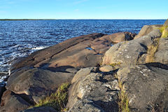 Rocky shore of the White sea. Karelia, Russia Stock Image