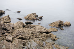 Rocky Shore of Yantai China Stock Images