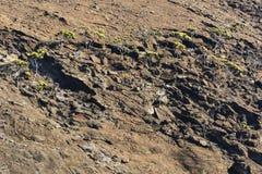 The rocky Shoreline at Bartolome Royalty Free Stock Photo