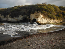 Rocky Shoreline Covered With Plants un giorno calmo Fotografia Stock Libera da Diritti