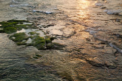 Rocky Shallow Water at Sunset Royalty Free Stock Photos