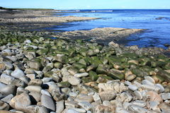 Rocky Shoreline, Ireland Royalty Free Stock Images