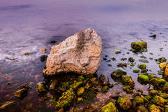 Rocky Shoreline With Moss and Foam Royalty Free Stock Photos