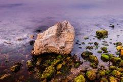 Rocky Shoreline With Moss und Schaum Lizenzfreie Stockfotos