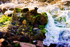 Rocky Shoreline With Moss und Schaum-Sonderkommando Stockfotos