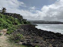 Rocky shoreline with napaka and tall Coconut trees along path Royalty Free Stock Photos