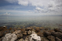 Rocky Shoreline of Tampa Bay Stock Photography