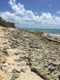 Rocky Shoreline van Grote Turk Stock Afbeeldingen