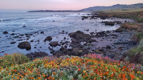 Rocky shores. At Big Sur  California Stock Photos