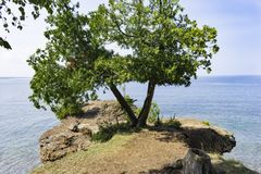 Rocky Shores de la isla de Presque Fotos de archivo libres de regalías