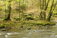 Rocky shores of forest river Stock Photo