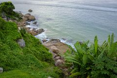 Rocky shores with sea vegetation royalty free stock image