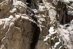 Rocky slope in the mountains Royalty Free Stock Image