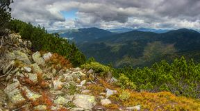 Rocky slope. Mountains slopes in autumn in Ukrainian Carpathians Royalty Free Stock Images