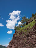 Rocky slope with trees Stock Photography