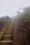 Rocky steps. Steps leading into fog in Tijuca National Park, Rio de Janeiro Royalty Free Stock Image