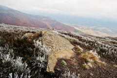 Rocky stone with frozen grass on Carpathians mountains. Royalty Free Stock Image