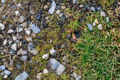 Rocky stones and grass on ground Stock Images