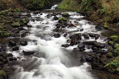 Rocky Stream. A refreshing stream in the Columbia River Gorge, Oregon Royalty Free Stock Image