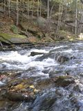 Rocky Stream Fotografia Stock