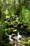 """Rocky Stream Of Elk Creek en bosque del Estado de Siskiyou del € de Rogue Riverâ """", Oregon foto de archivo"""