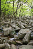 Rocky stream next to the Beomeosa Temple in Busan Stock Photos
