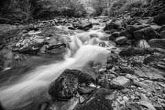 Rocky stream. A river passing through a forest in black and white stock photos