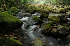 Rocky stream. Water flows along a rocky stream Stock Photos