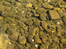 Rocky streambed Royalty Free Stock Photos