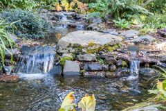Rocky Streem 3. A view of a rocky stream in Seatac, Washington Stock Images