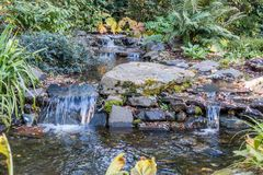 Rocky Streem 2. A view of a rocky stream in Seatac, Washington Royalty Free Stock Photo