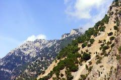 Rocky summit of the White Mountains Stock Photo