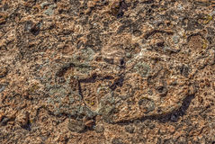 Rocky Surface of Canyonlands Royalty Free Stock Image