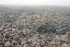 Rocky Surface in Tundra at Svalbard Stock Images