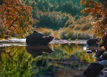 Rocky Swimming Lake Stock Photo