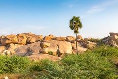 Rocky terrain with palm, Hampi, Karnataka, India. Asia royalty free stock photo