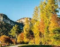 Rocky terrain. Trentino,Italy,October 29 2016, Brenta Dolomites rocky terrain Monte di Mezzocorona,autumn landscape Stock Photos
