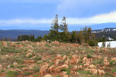 Rocky terrain of Wyoming Royalty Free Stock Photo