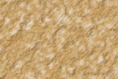 Rocky texture. Beige rocky texture background vector illustration