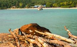 Rocky Thai Island Beach Koh Lan stockbilder