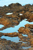 Rocky Tide Pools Stock Images