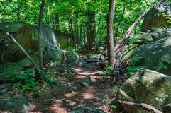 Rocky Trail photo stock