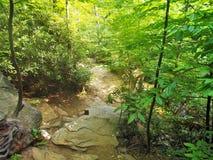 Rocky Trail au parc d'état accrochant de roche photo libre de droits